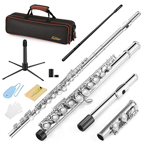 Eastar C Flutes Closed Hole C Flute Musical Instrument with Cleaning Rod, Carrying Case, Stand,...