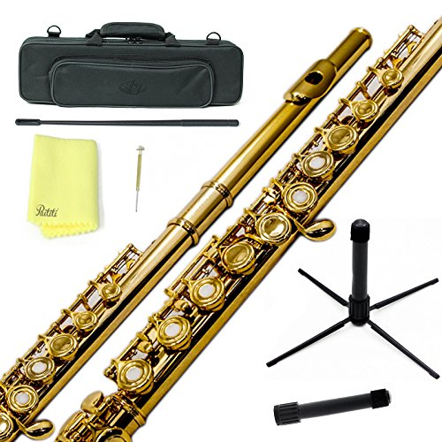 Sky C Flute with Lightweight Case, Cleaning Rod, Cloth, Joint Grease and Screw Driver - Gold/Gold...