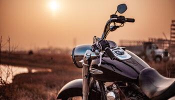ergonomic bike grips