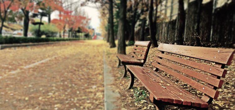 ergonomic bench