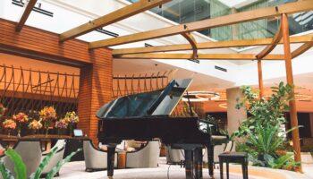 ergonomic piano bench