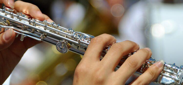ergonomic flute