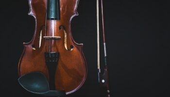 ergonomic viola